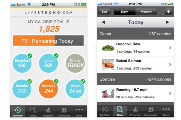 Tracking Your Diet